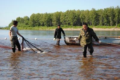 Коренные малочисленные народы Сахалина выйдут на пикет из-за проблем с рыболовством