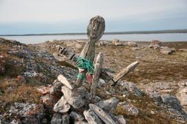 Национальный парк может появиться на священном для ненцев острове Вайгач