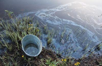 Министр природных ресурсов Коми назвал виновника нефтяного загрязнения