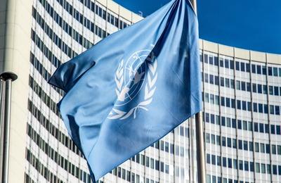 ООН запустила проект о роли русского языка в мире