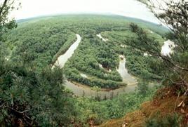 Община удэгейцев и нанайцев получила 17 млн рублей за сохраненные леса долины реки Бикин