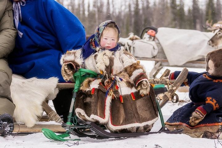 В Югре будут изучать гены жителей Крайнего Севера и Арктики