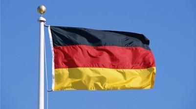 Amnesty International вступилась за активистов, поднявших флаг Германии в Калининграде
