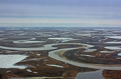 Субсидию на создание искусственных пастбищ выделят на Ямале