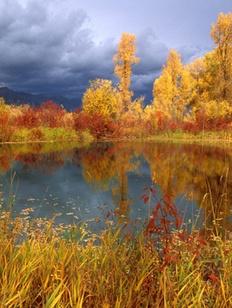 Хмурая осень – веселью не помеха