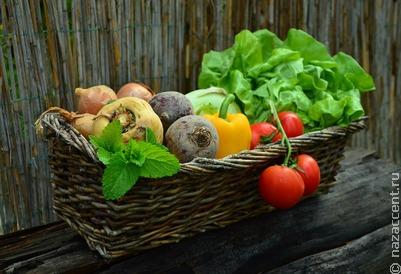 Многодетные и малоимущие семьи Ингушетии получили продуктовые наборы для Ураза-байрам