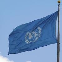 Создать электронную базу языков коренных народов российской Арктики предложили в ООН