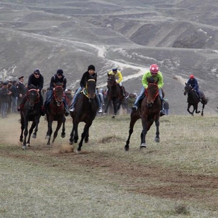 В Дагестане отпраздновали День первой борозды