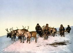 Совет по межнациональным отношениям в 2016 году обсудит с Путиным проблемы народов Арктики