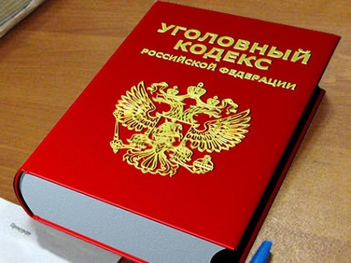 Защита Носика поднимет вопрос о конституционности существовании экстремистской статьи