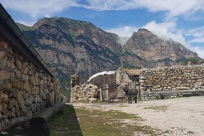 В Северной Осетии нашли древние аланские захоронения принесенных в жертву