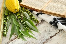 Евреи всего мира начали праздновать Суккот