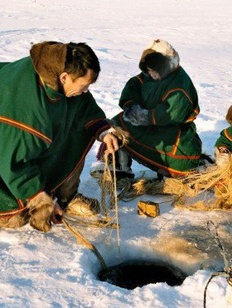 Защиту интересов коренных народов в рыболовстве возложили на региональные власти Якутии