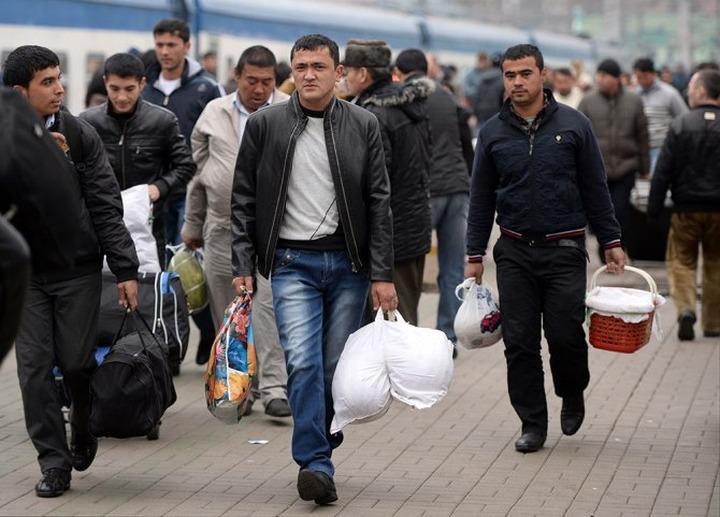 В Новосибирской области мигрантам запретили водить такси и работать в школах