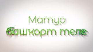 Телеуроки башкирского языка запустили в Башкортостане