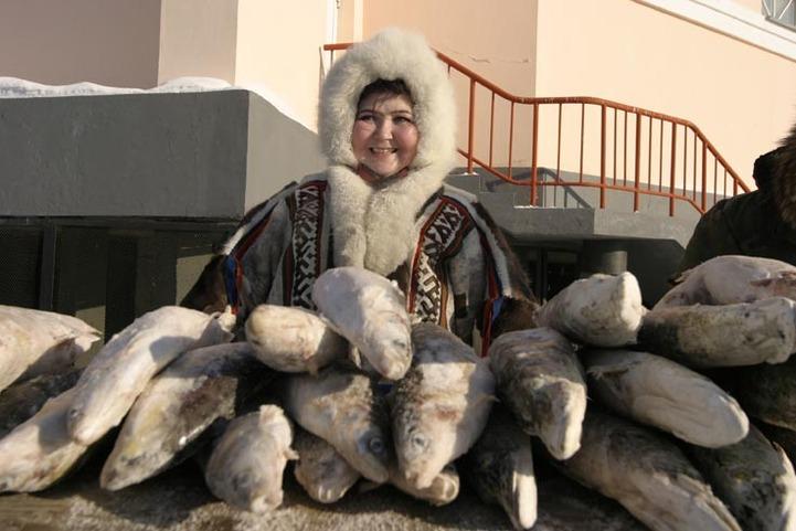 Власти разрешили КМНС выловить 9 тонн лосося