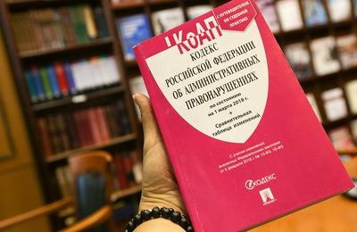 Госдума приняла поправки в закон о демонстрации нацистской символики