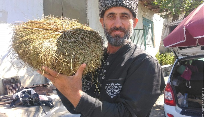 Не курить, не пить, шорты не носить: в Дагестане издали памятку туриста