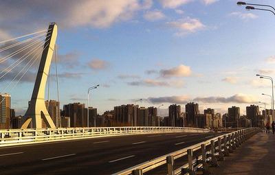 В Петербурге вновь отклонили референдум по мосту Кадырова