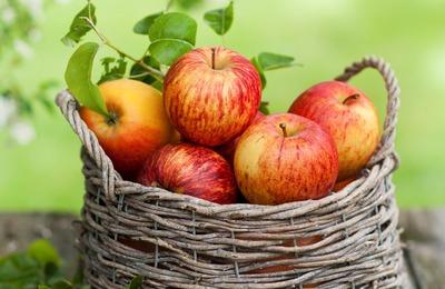 Яблоки — с творогом и мясом