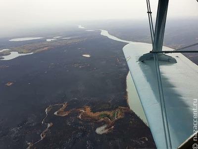 """""""Зелёные"""" предложили разрешить охоту в Якутии только для коренных народов"""
