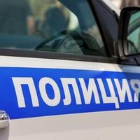 """Фестиваль черемши """"Honk Fest"""" впервые пройдет в Грозном"""