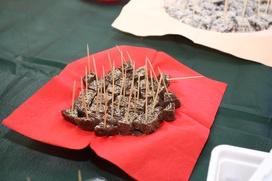 Ямало-ненецкие ученые разработали арктический фастфуд с ягельным соусом