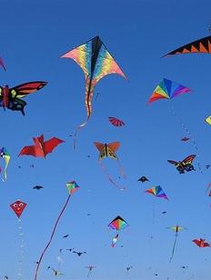 """Воздушных змеев с пельменной символикой запустят на """"Всемирном дне пельменя"""""""