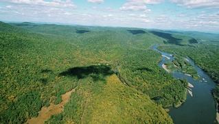 """Коренные народы Камчатки призвали ограничить территории для """"дальневосточного гектара"""""""