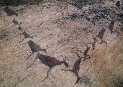 Карельские петроглифы могут попасть в список Всемирного наследия ЮНЕСКО