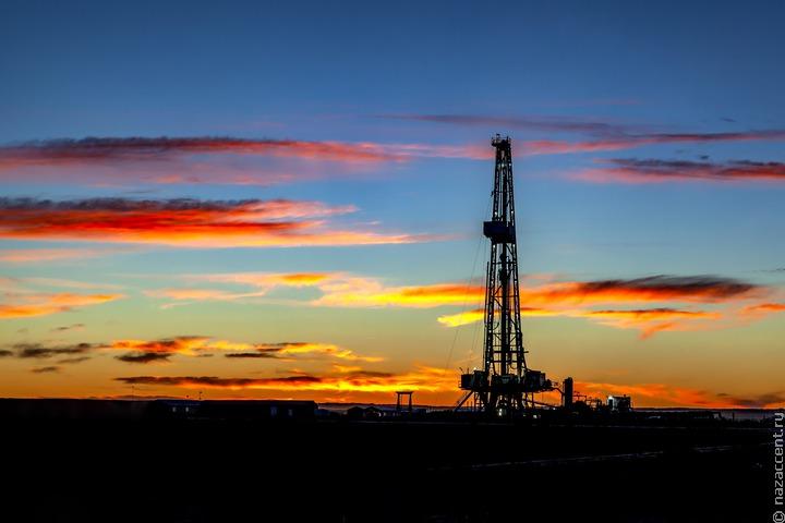 WWF: ущерб от аварии с разливом нефти в Коми может составить 1 миллиард рублей