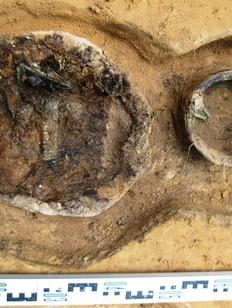 Несколько расположенных в ряд древних погребений обнаружили в Костромской области