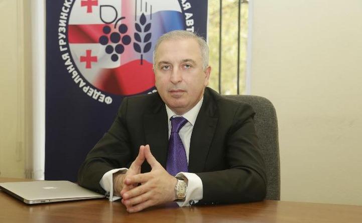 Федеральная грузинская автономия попросила Путина возобновить авиасообщение с Грузией