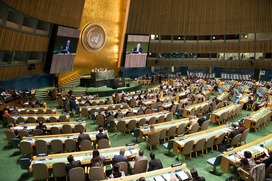 Россияне рассказали в ООН о становлении неонацизма на Украине