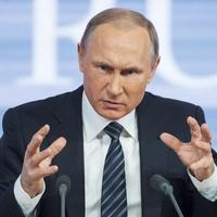 Ижорцы, ингерманландцы и водь попросили Путина защитить Кургальский заказник от газопровода