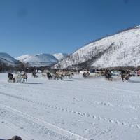 День оленевода на Камчатке