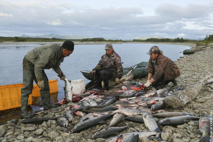 В камчатском селе разделили жителей: ловить рыбу разрешили только представителям коренных народов