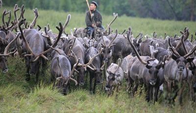 В России хотят провести перепись коренных малочисленных народов
