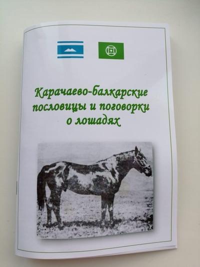 В Карачаево-Черкесии выпустили сборник пословиц и поговорок о лошадях