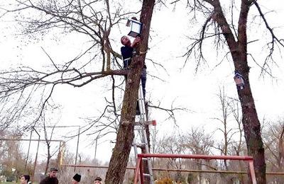 Юные казаки Ставропольского края подготовили дома для перелетных птиц