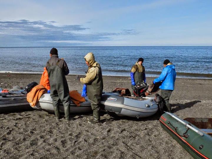 Власти Чукотки выделят субсидии на закупку рыбы у общин КМНС