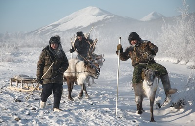 Глава Ненецкого АО заявил о слишком низких зарплатах оленеводов
