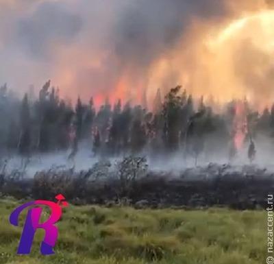 Жителей якутского села эвакуировали из-за приближающегося лесного пожара