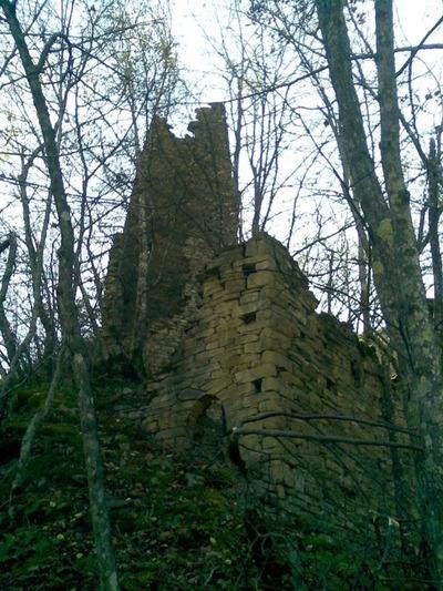 Чеченский археолог попытается спасти Хьелдинские башни с помощью интернета