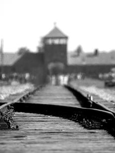 Amazon убрал новогодние игрушки с изображением Освенцима после критики польского музея
