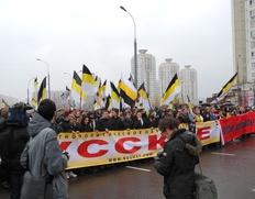 Более 30 националистов задержали у Госдумы за пикеты против раздачи гражданства