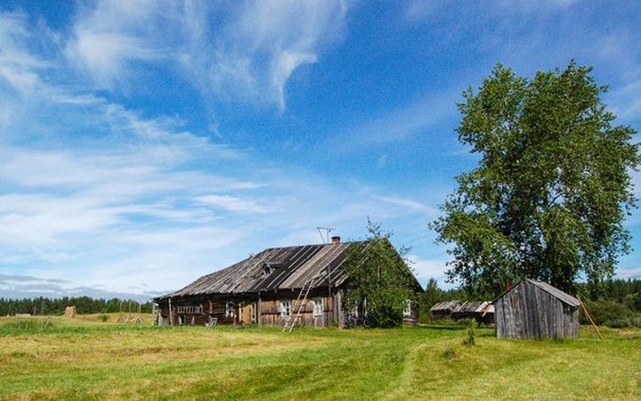Активисты начали кампанию за возрождение старинной карельской деревни Гафостров
