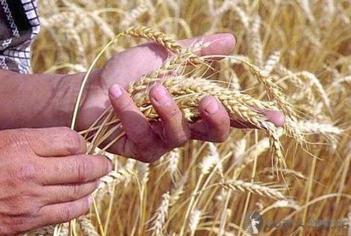 В Башкирии прошел татарский праздник урожая
