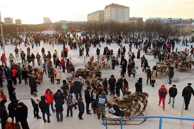 Воркутинские перевозчики попросили перенести оленьи бега из-за автобусов