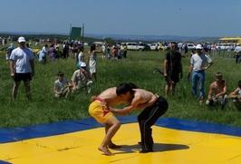 В Санкт-Петербурге хотят сделать соревнования по национальным видам спорта регулярными